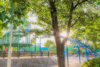 公園の写真・画像素材[2337334]