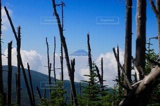 富士山の写真・画像素材[110352]