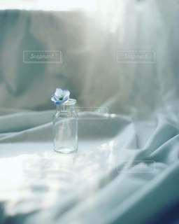 青色のやわらかな癒やし♡の写真・画像素材[3231684]