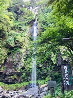阿弥陀ヶ滝の写真・画像素材[2310871]