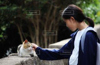 猫と少女の写真・画像素材[2340465]