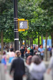 ニューヨークの信号の写真・画像素材[2345296]