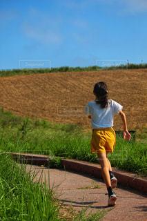 丘に向かって走る少女の写真・画像素材[2443619]