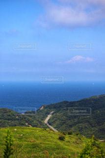 海へ続く道の写真・画像素材[2443861]