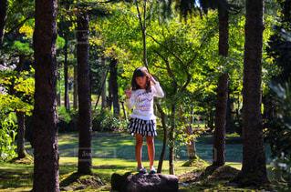 森の中の女の子の写真・画像素材[2463029]