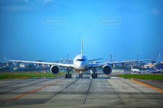 A350の写真・画像素材[2501437]