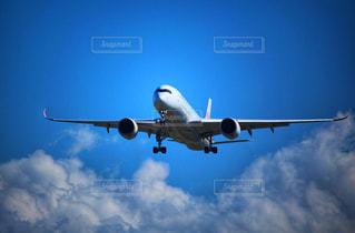 A350の写真・画像素材[2501439]