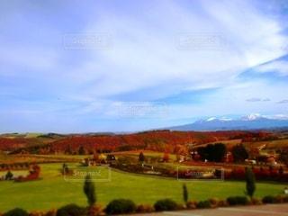 秋の富良野の写真・画像素材[2632062]