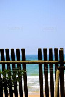 海への道の写真・画像素材[3114716]