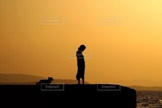 少女と犬と海の写真・画像素材[3865850]