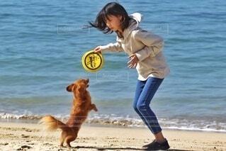 犬と少女の写真・画像素材[4156690]