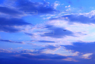 空とヒコーキの写真・画像素材[4597604]