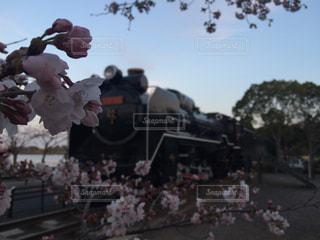 風景 - No.121477