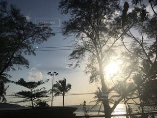 南国の夕陽の写真・画像素材[2313735]