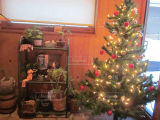 部屋のクリスマスツリーの写真・画像素材[2311652]