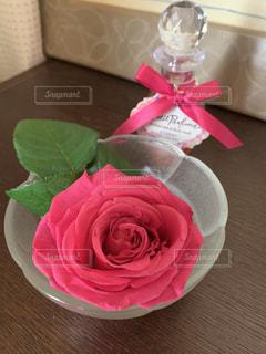 薔薇の写真・画像素材[3155302]