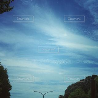 筋雲と鱗雲の写真・画像素材[2337444]