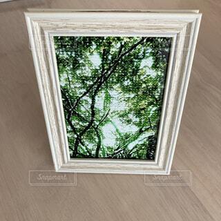 木々の風景写真アートのフォトフレームの写真・画像素材[4396034]