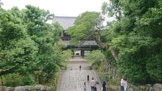 知恩院三門の写真・画像素材[2325292]
