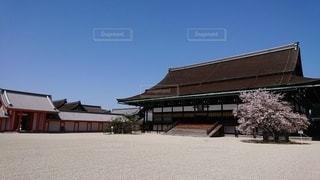 京都御苑春の一般公開の写真・画像素材[2327911]