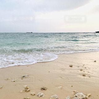 海に隣接する砂浜の写真・画像素材[2323518]