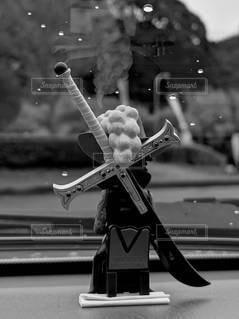 ミホークの背中の写真・画像素材[2325183]