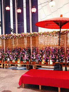 和傘と朝顔の写真・画像素材[2356032]