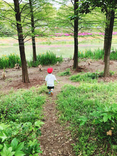 森の中の少年の写真・画像素材[2394568]