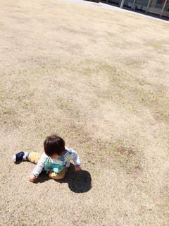 草の上の小さな男の子の写真・画像素材[2420880]