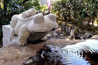 神社の水場の写真・画像素材[4304250]