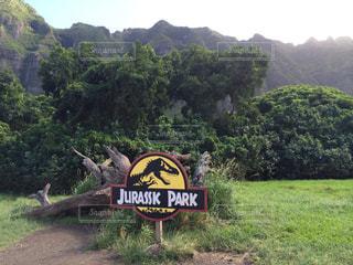 ハワイ、クアロアランチ ジュラシックパーク看板の写真・画像素材[2336045]