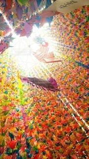 七夕祭の写真・画像素材[2338238]