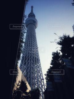 Tokyo Skytreeの写真・画像素材[2331388]