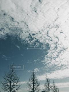 空の写真・画像素材[329408]