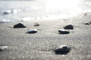 近くのビーチの写真・画像素材[1171035]