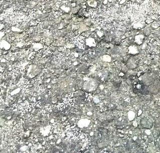 岩のクローズアップの写真・画像素材[2333312]
