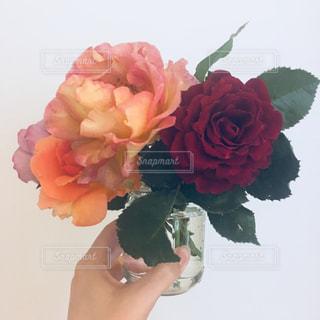 バラの花束の写真・画像素材[2338215]