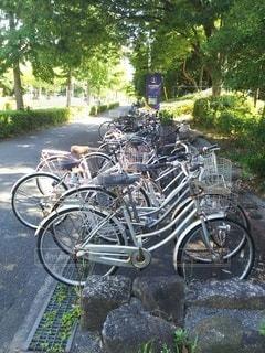自転車は木の隣に駐車しているの写真・画像素材[2341236]