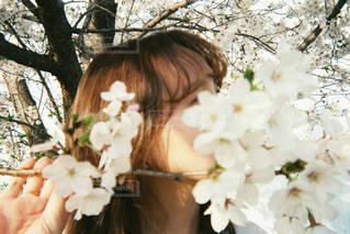 花を食べる女性の写真・画像素材[2743201]