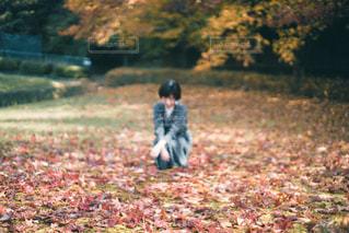 草の中に立っている小さな男の子の写真・画像素材[2743233]