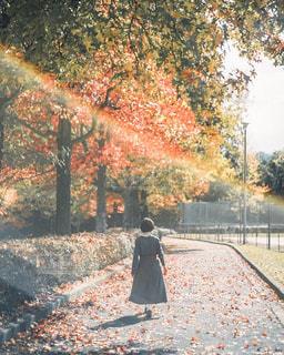 木の隣に立っている人の写真・画像素材[2743234]