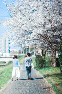 小道を歩く人々のグループの写真・画像素材[2871841]