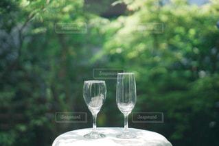 ワイングラスを持ってテーブルに座っている人の写真・画像素材[3153602]