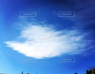 青空に白い鳩みたいな雲が!の写真・画像素材[2387280]
