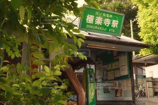 店の上の緑色の看板の写真・画像素材[2444618]