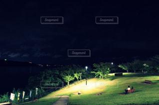 暗闇の中に木がある大きな緑の野原の写真・画像素材[2348590]