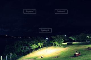 暗闇の中で木々が植わる緑の野原のクローズアップの写真・画像素材[2348591]