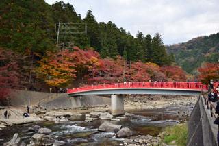水域を渡る橋を渡る列車の写真・画像素材[2348855]