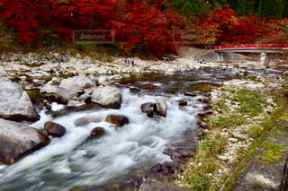 香嵐渓の紅葉の写真・画像素材[2370718]