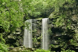 森の中の大きな滝の写真・画像素材[2376189]